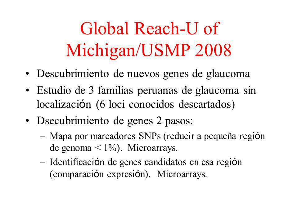 Global Reach-U of Michigan/USMP 2008