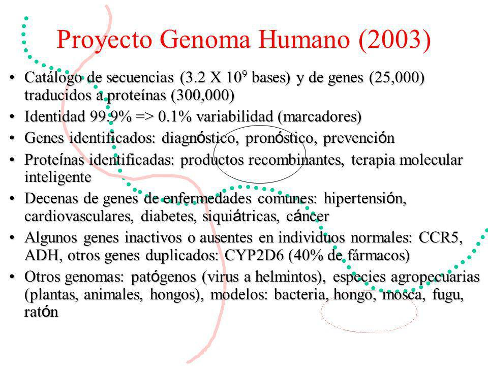 Proyecto Genoma Humano (2003)