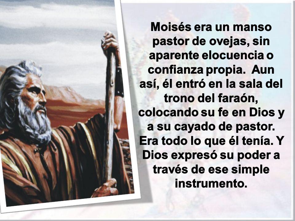 Moisés era un manso pastor de ovejas, sin aparente elocuencia o confianza propia.