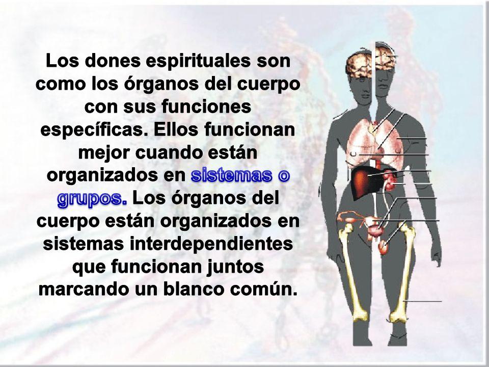 Los dones espirituales son como los órganos del cuerpo con sus funciones específicas.