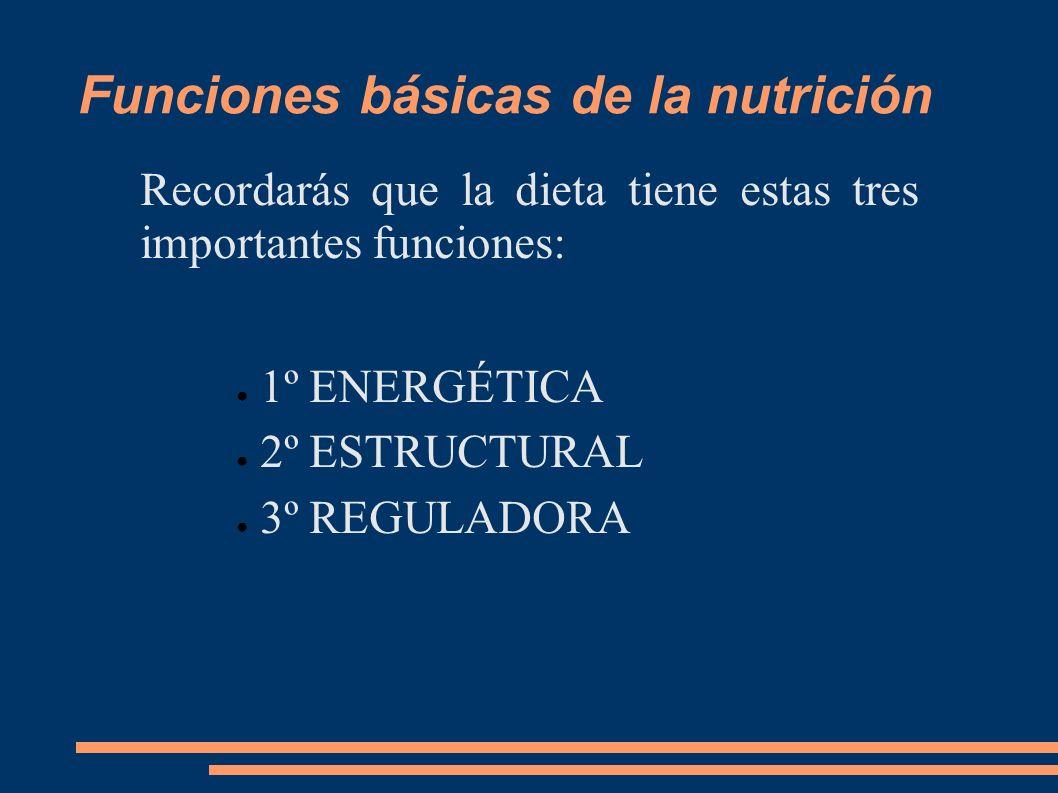 Funciones básicas de la nutrición