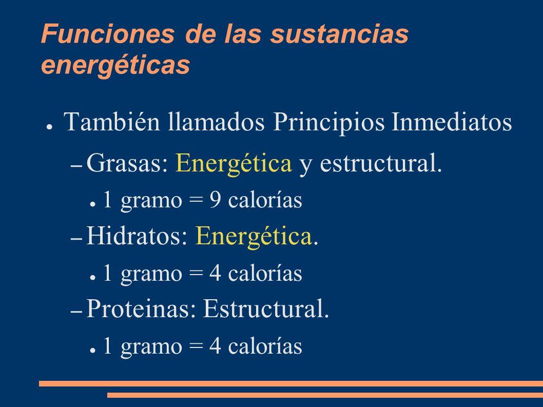 Funciones de las sustancias energéticas