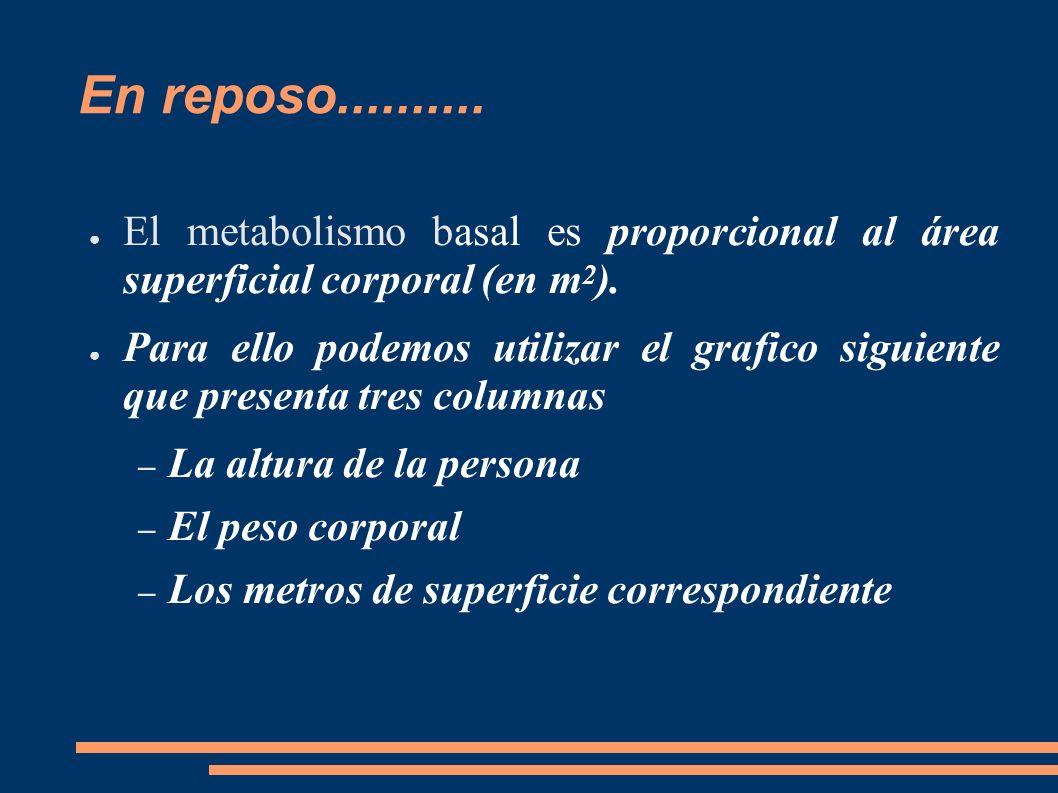 En reposo.......... El metabolismo basal es proporcional al área superficial corporal (en m2).