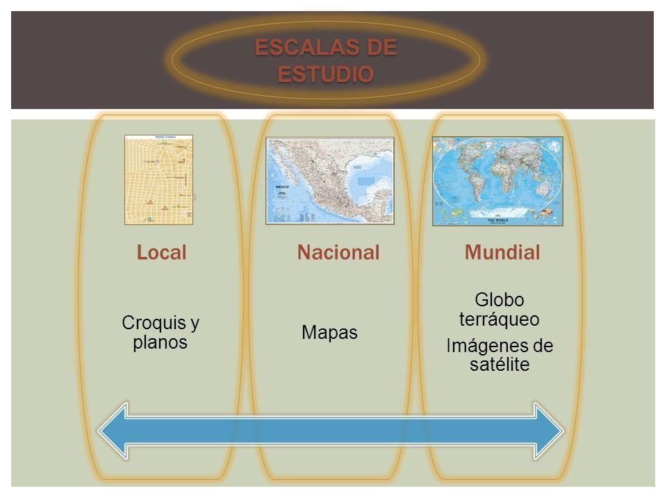 ESCALAS DE ESTUDIO Local Nacional Mundial Globo terráqueo