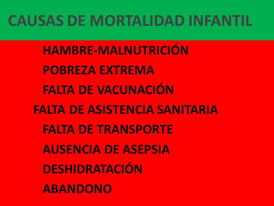 CAUSAS DE MORTALIDAD INFANTIL