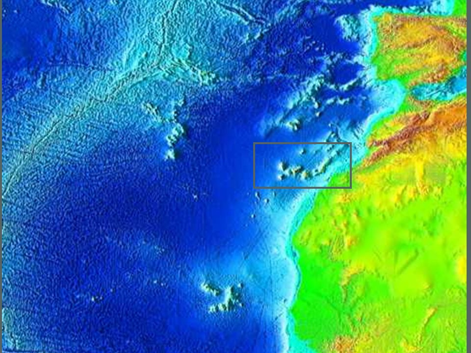 Los fenómenos naturales capaces de engendrar RIESGOS se deben a su localización geográfica.