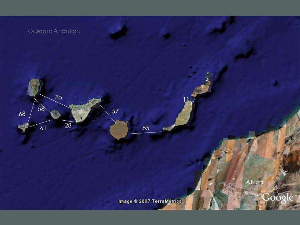 68 58 61 85 28 57 11 Océano Atlántico África 125 95