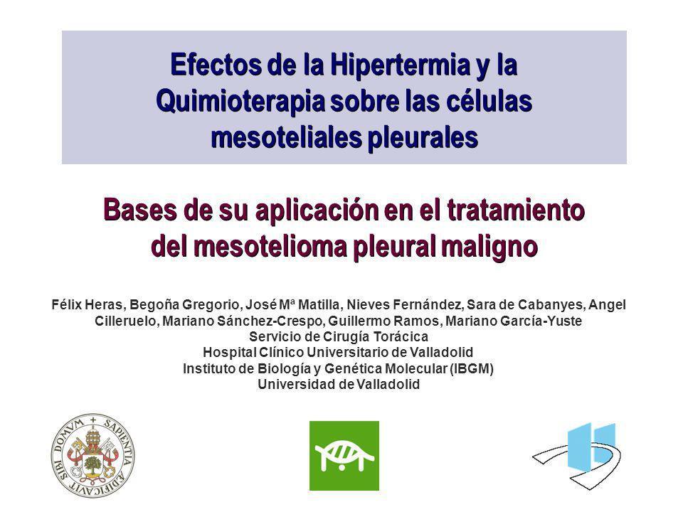 Efectos de la Hipertermia y la Quimioterapia sobre las células mesoteliales pleurales