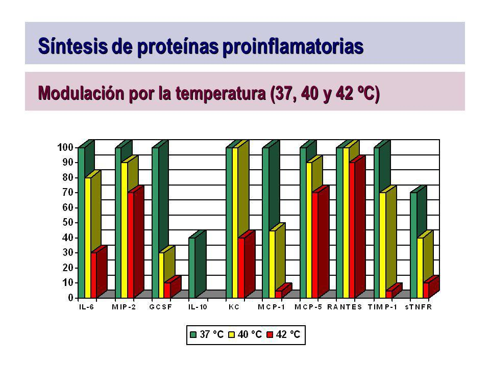 Síntesis de proteínas proinflamatorias