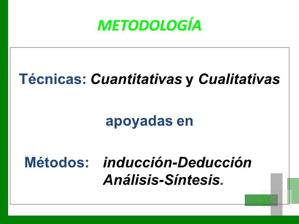 METODOLOGÍA Técnicas: Cuantitativas y Cualitativas apoyadas en Métodos: inducción-Deducción Análisis-Síntesis.
