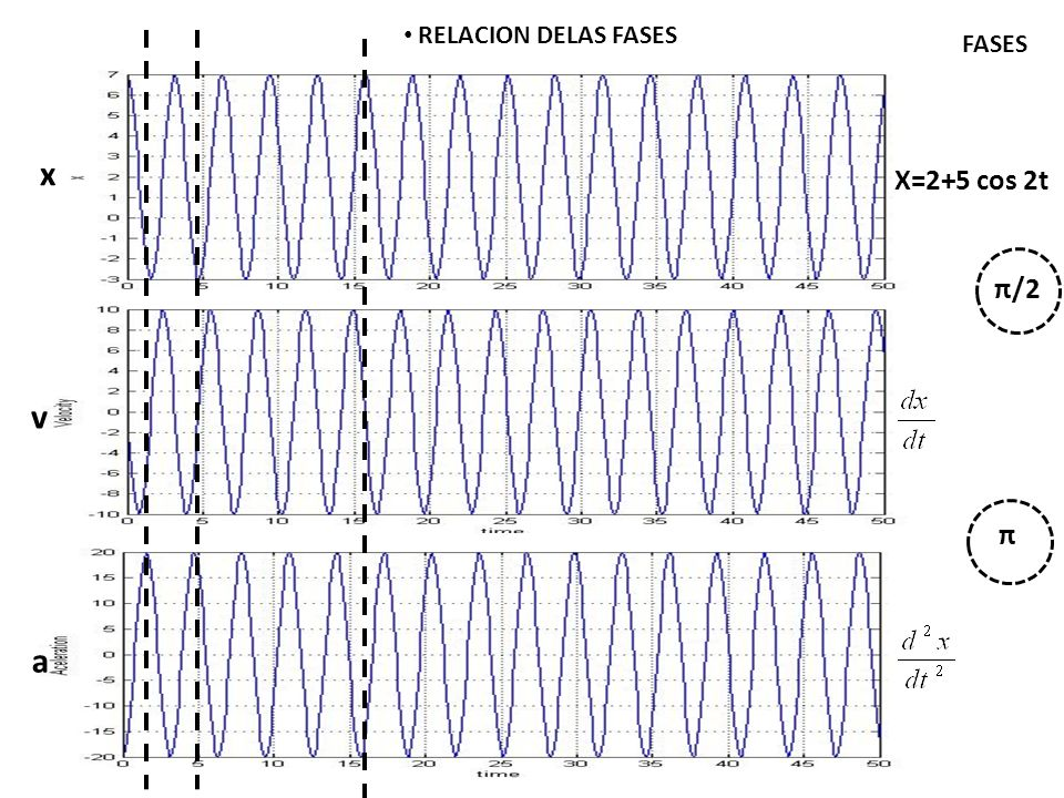 RELACION DELAS FASES FASES x X=2+5 cos 2t π/2 v π a