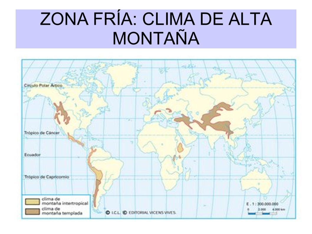 ZONA FRÍA: CLIMA DE ALTA MONTAÑA