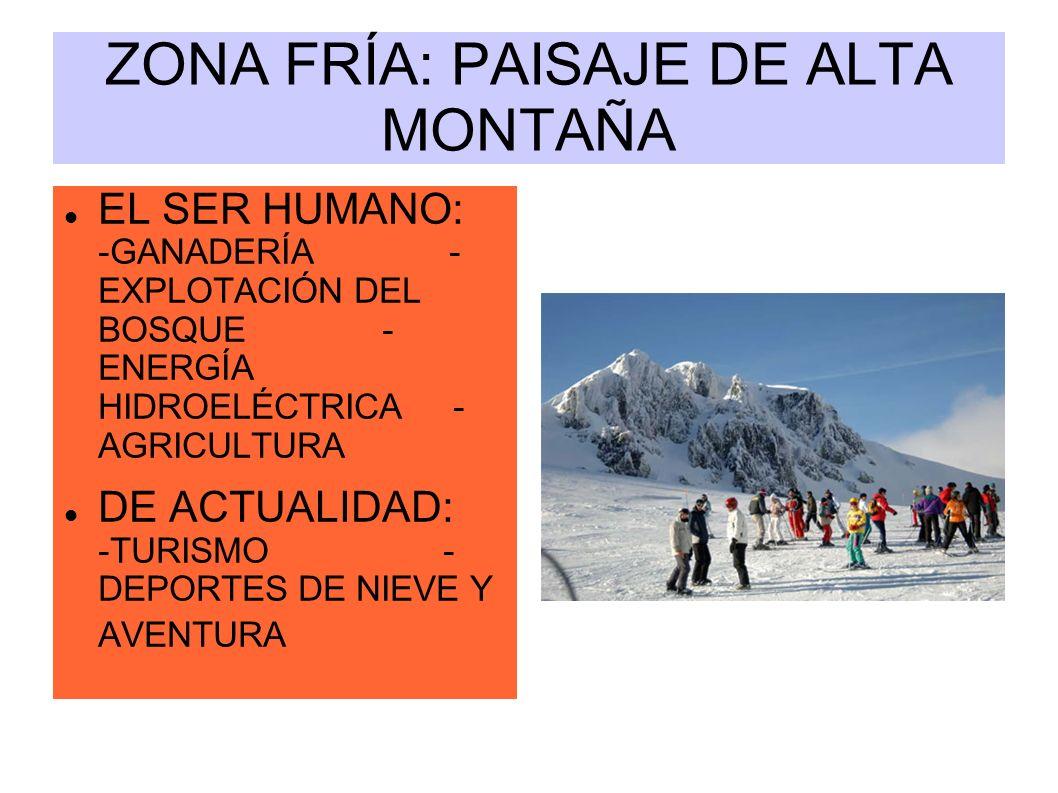 ZONA FRÍA: PAISAJE DE ALTA MONTAÑA