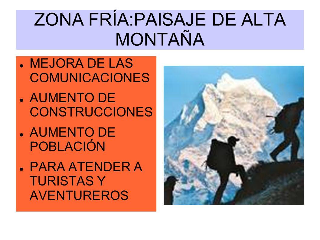 ZONA FRÍA:PAISAJE DE ALTA MONTAÑA
