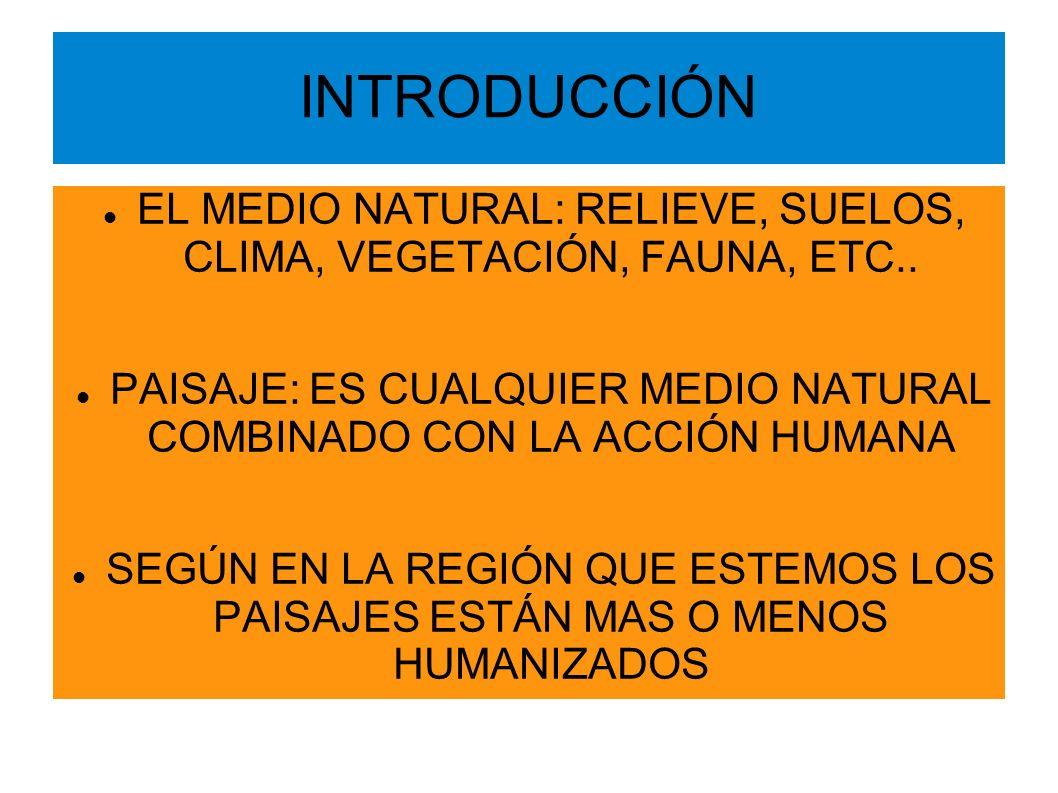 INTRODUCCIÓN EL MEDIO NATURAL: RELIEVE, SUELOS, CLIMA, VEGETACIÓN, FAUNA, ETC.. PAISAJE: ES CUALQUIER MEDIO NATURAL COMBINADO CON LA ACCIÓN HUMANA.