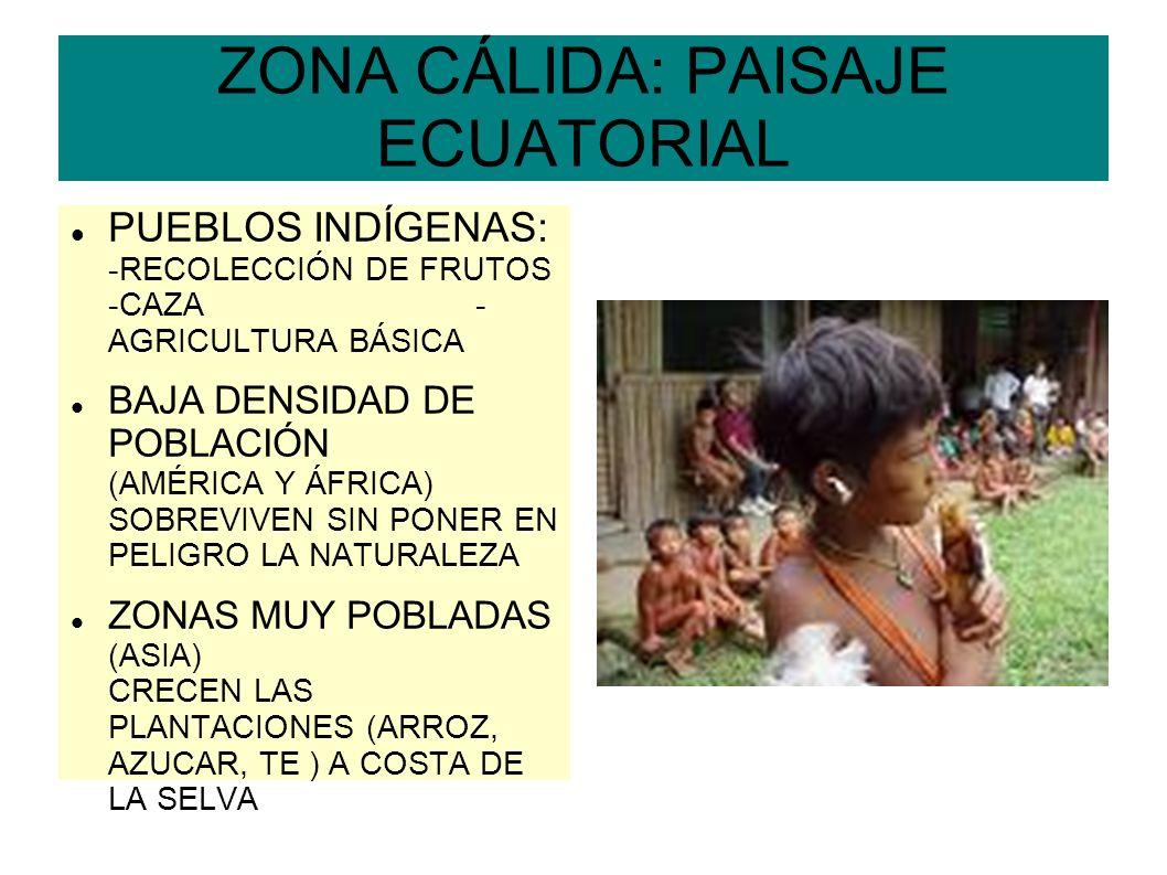ZONA CÁLIDA: PAISAJE ECUATORIAL