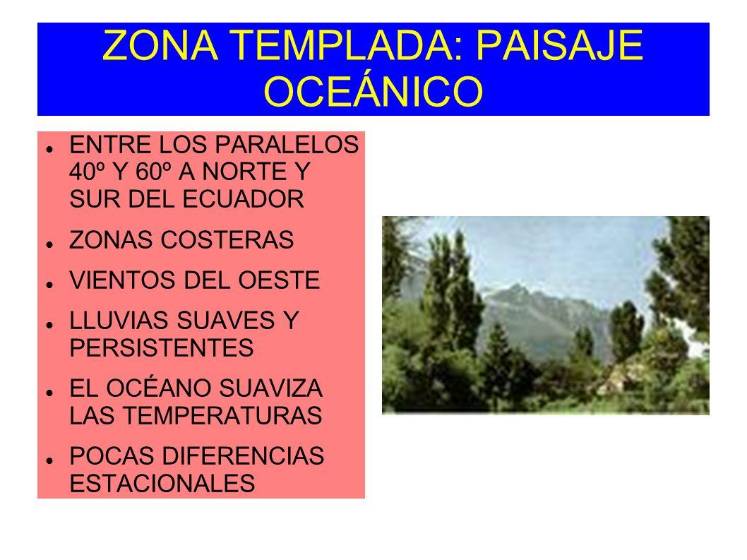 ZONA TEMPLADA: PAISAJE OCEÁNICO