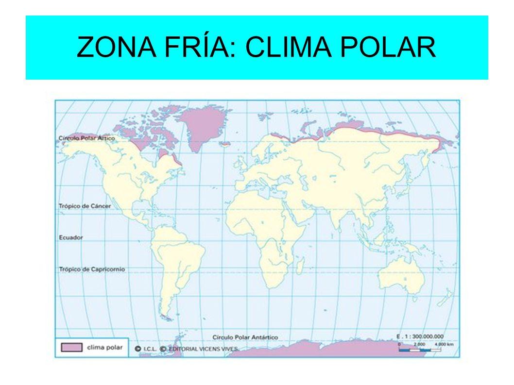 ZONA FRÍA: CLIMA POLAR