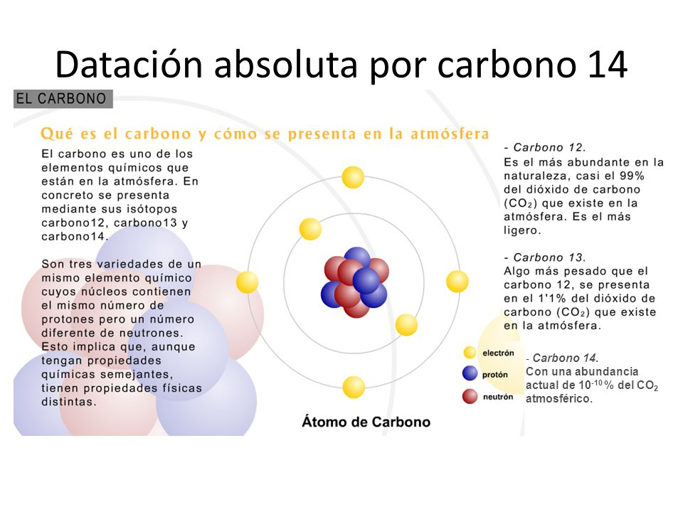 Datación absoluta por carbono 14