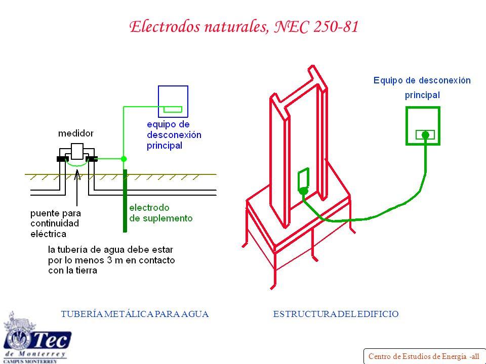 Electrodos naturales, NEC 250-81