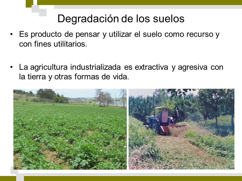 Degradación de los suelos