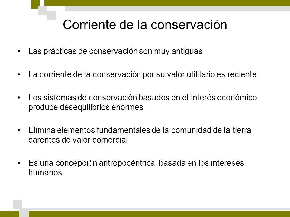 Corriente de la conservación