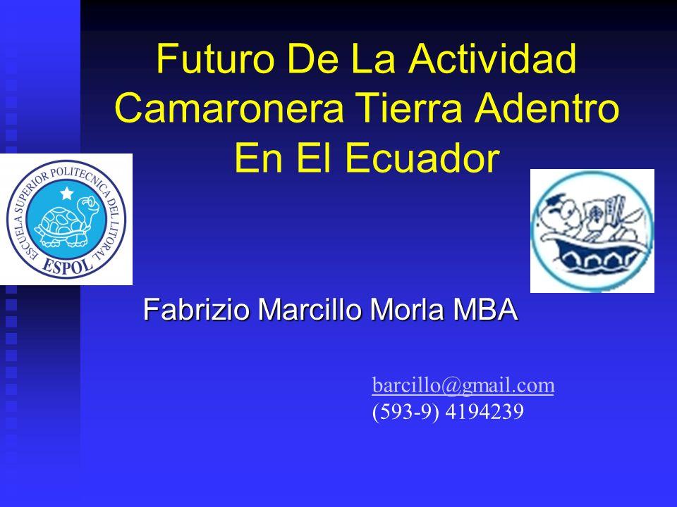 Futuro De La Actividad Camaronera Tierra Adentro En El Ecuador