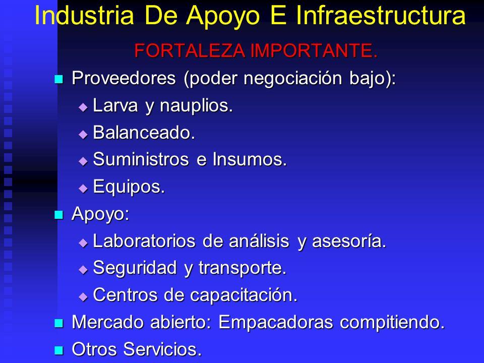 Industria De Apoyo E Infraestructura