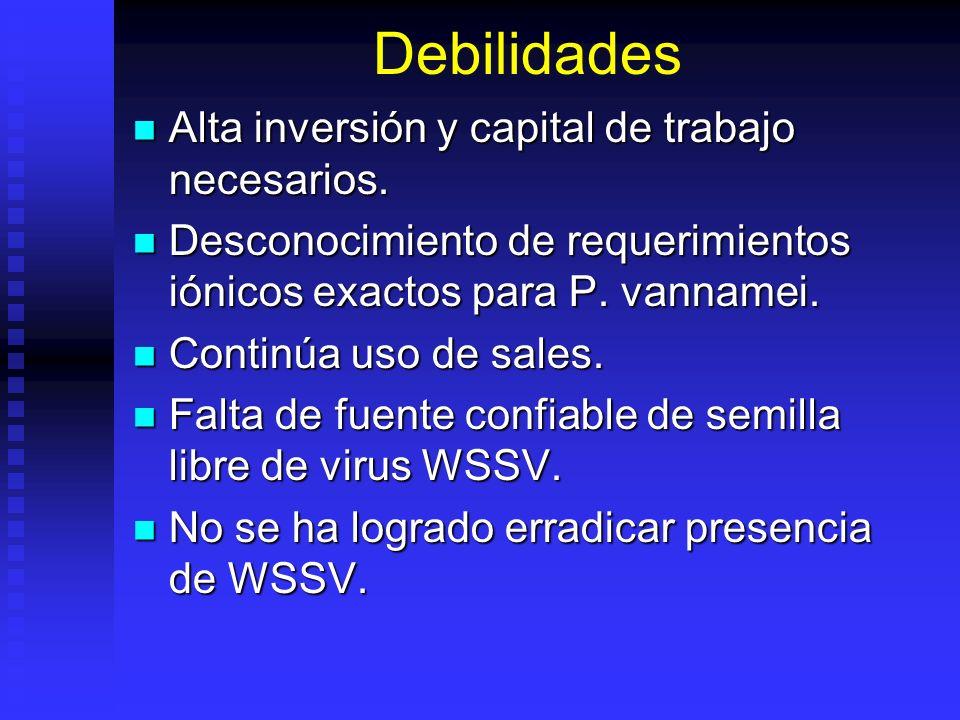 Debilidades Alta inversión y capital de trabajo necesarios.