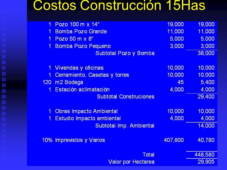 Costos Construcción 15Has