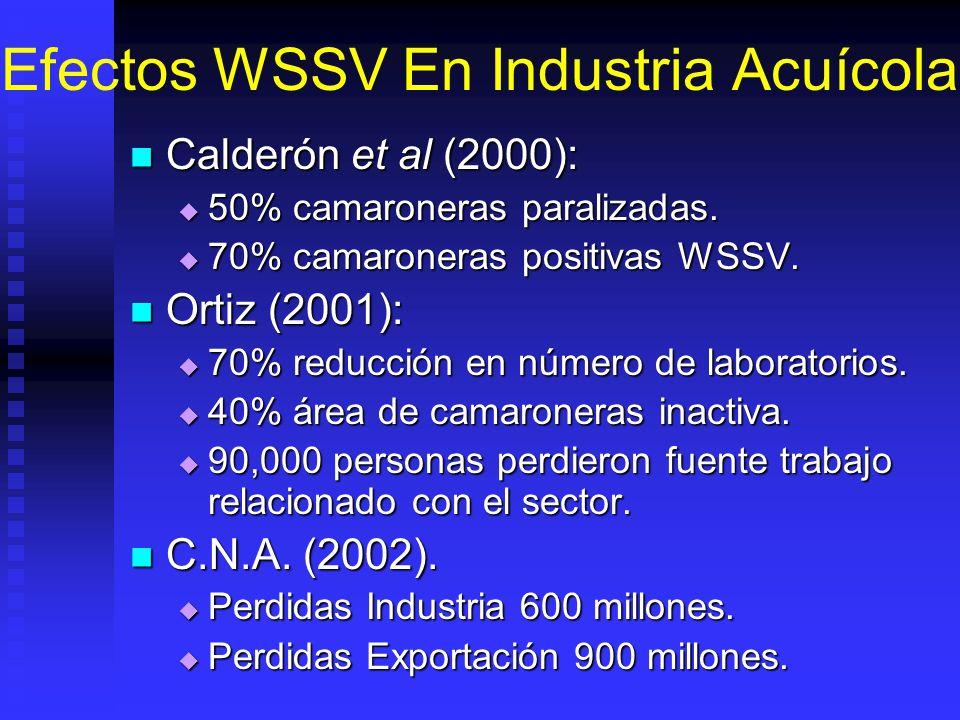 Efectos WSSV En Industria Acuícola