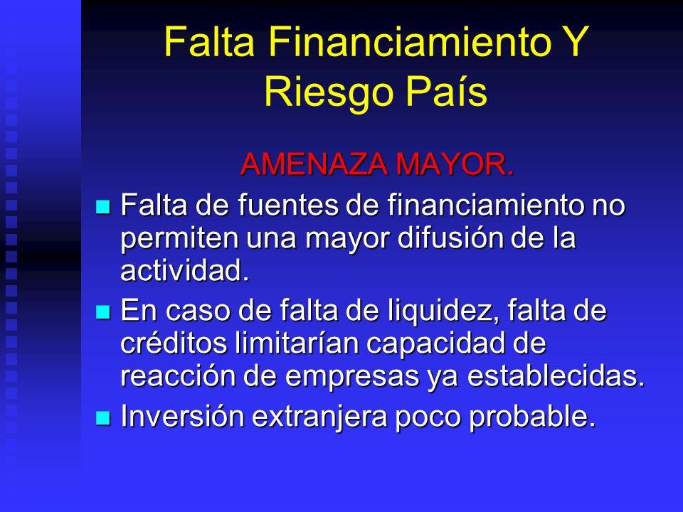 Falta Financiamiento Y Riesgo País