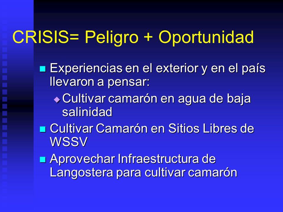 CRISIS= Peligro + Oportunidad