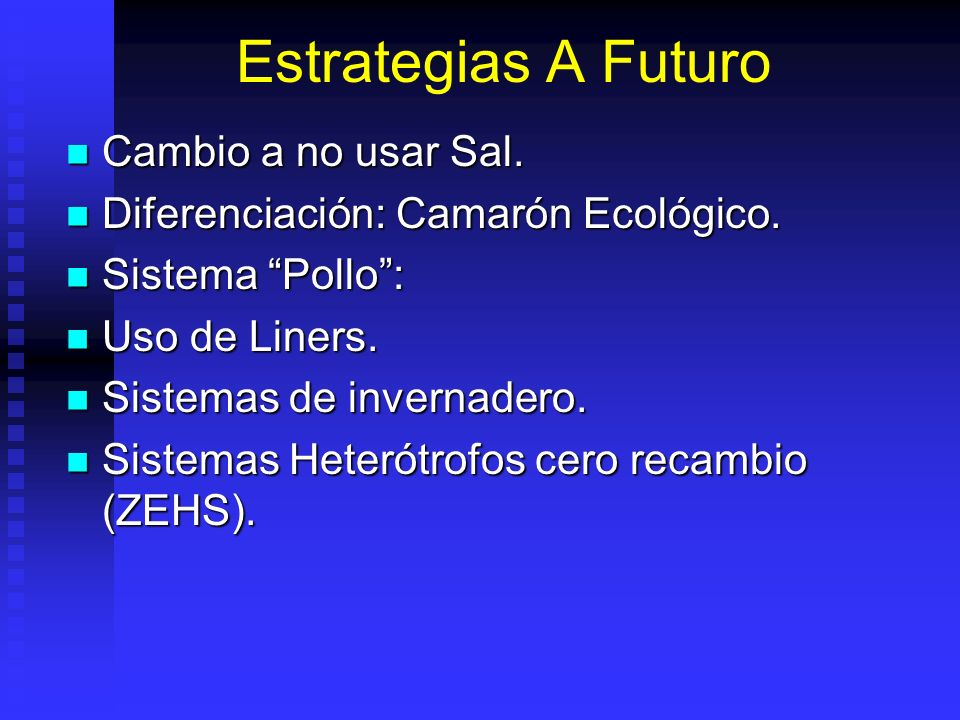 Estrategias A Futuro Cambio a no usar Sal.