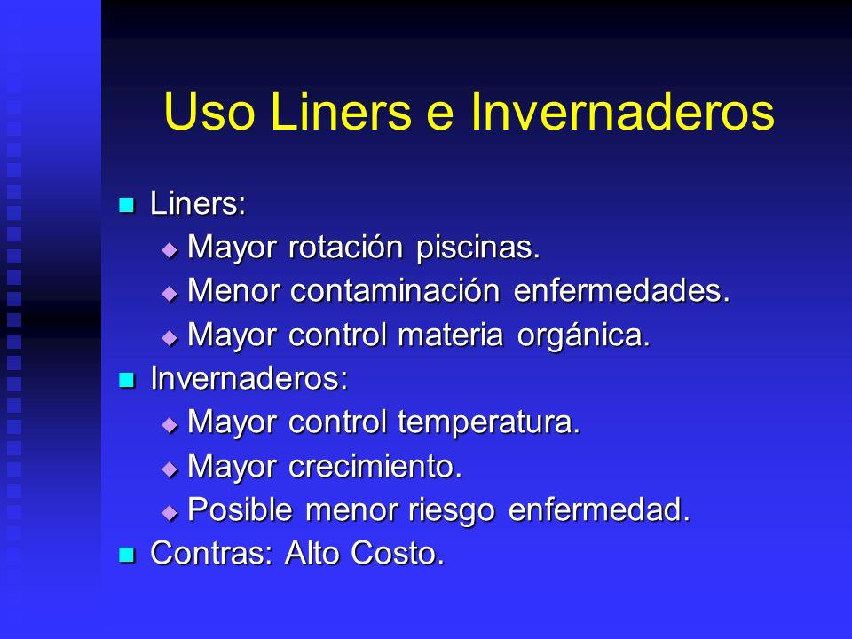 Uso Liners e Invernaderos