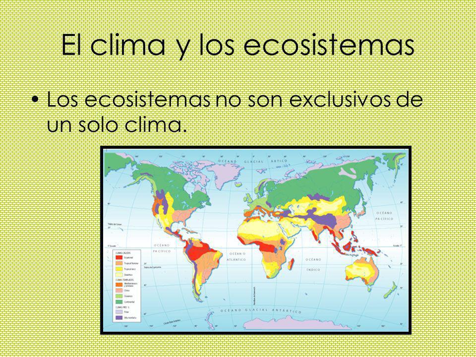 El clima y los ecosistemas
