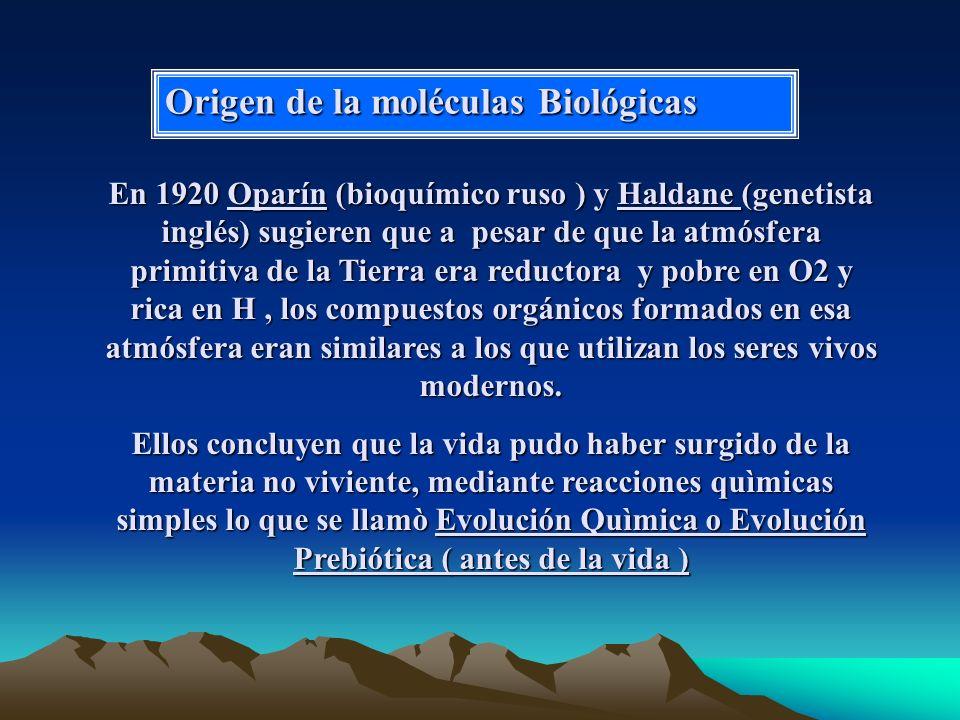 Origen de la moléculas Biológicas