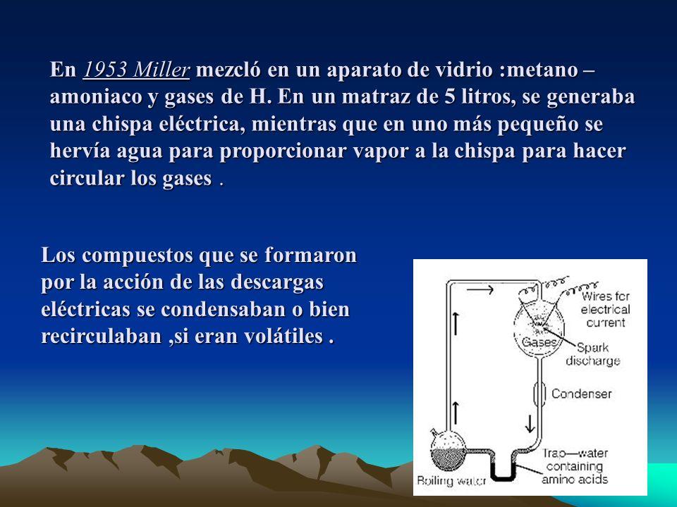 En 1953 Miller mezcló en un aparato de vidrio :metano –amoniaco y gases de H. En un matraz de 5 litros, se generaba una chispa eléctrica, mientras que en uno más pequeño se hervía agua para proporcionar vapor a la chispa para hacer circular los gases .