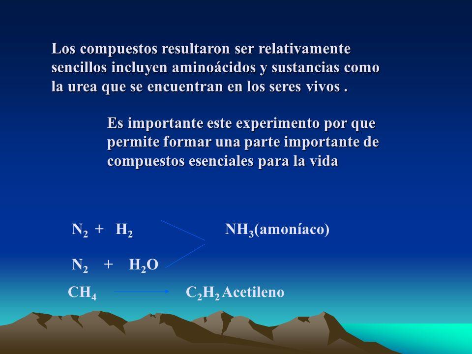 Los compuestos resultaron ser relativamente sencillos incluyen aminoácidos y sustancias como la urea que se encuentran en los seres vivos .
