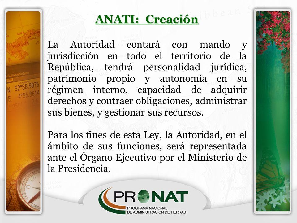 ANATI: Creación