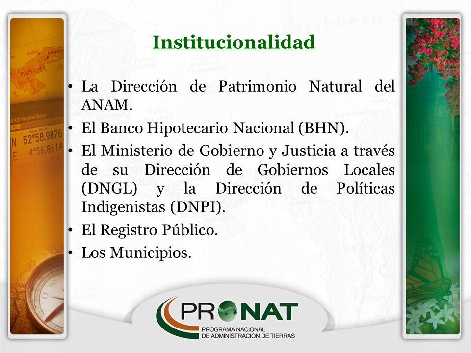 Institucionalidad La Dirección de Patrimonio Natural del ANAM.
