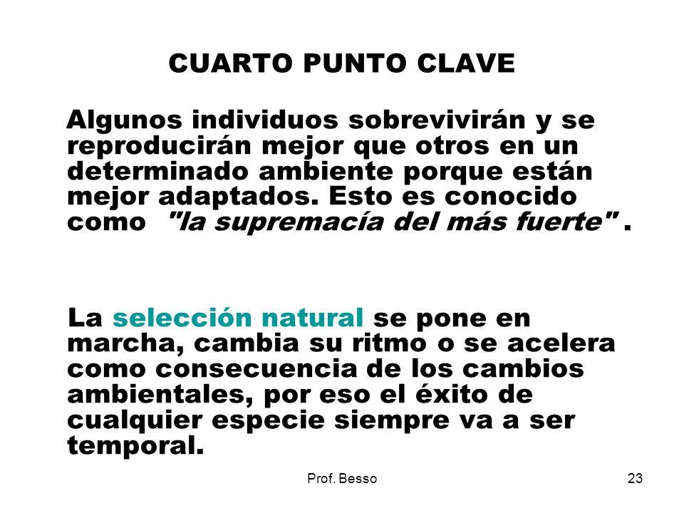 CUARTO PUNTO CLAVE
