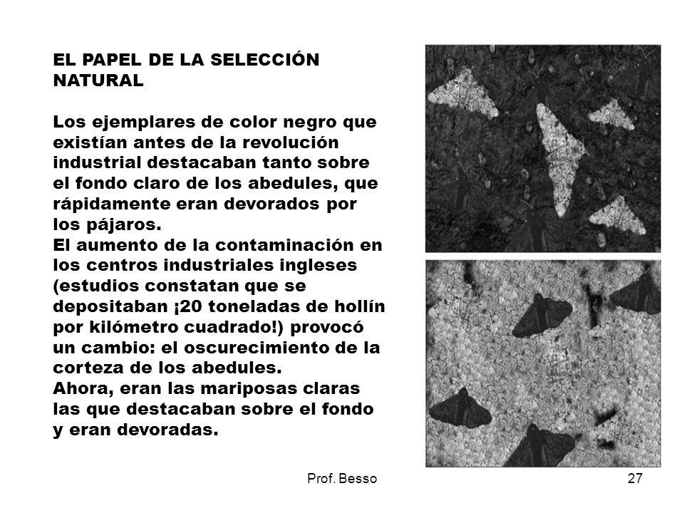 EL PAPEL DE LA SELECCIÓN NATURAL