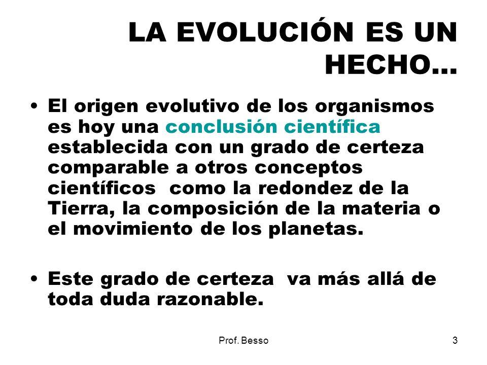 LA EVOLUCIÓN ES UN HECHO…
