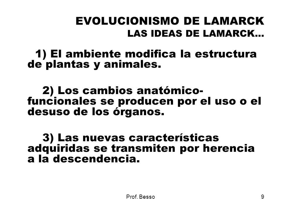 EVOLUCIONISMO DE LAMARCK LAS IDEAS DE LAMARCK…