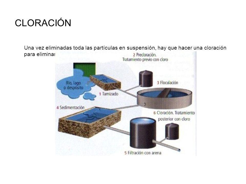 CLORACIÓN Una vez eliminadas toda las partículas en suspensión, hay que hacer una cloración para eliminar los microorganismos.