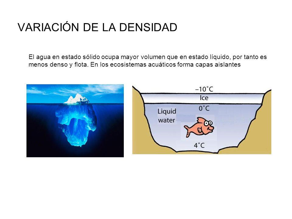 VARIACIÓN DE LA DENSIDAD