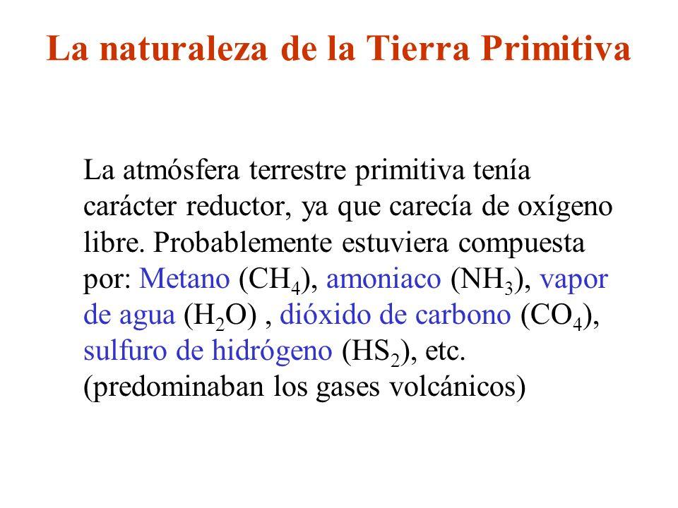 La naturaleza de la Tierra Primitiva
