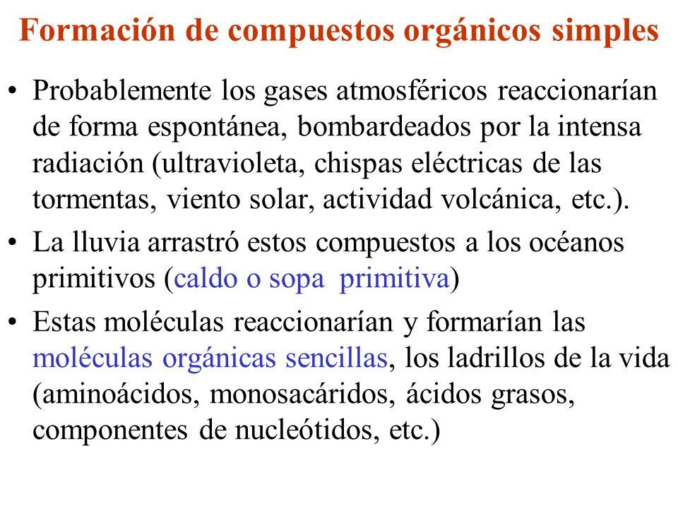 Formación de compuestos orgánicos simples