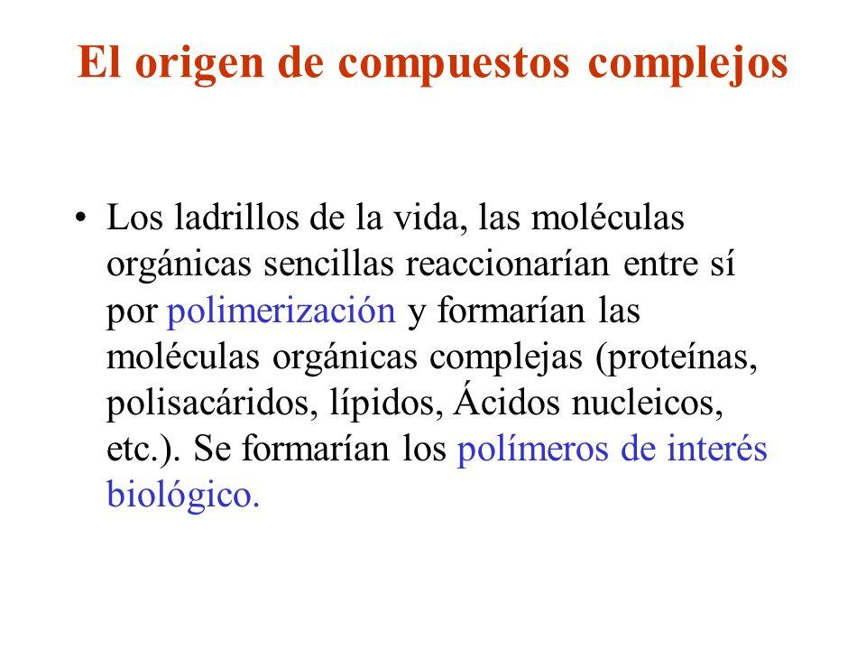 El origen de compuestos complejos